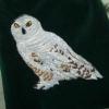 Snowy Owl Bag